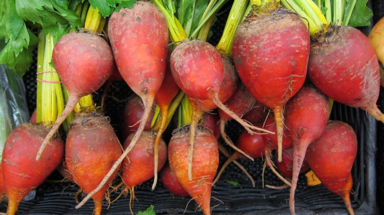 local beets
