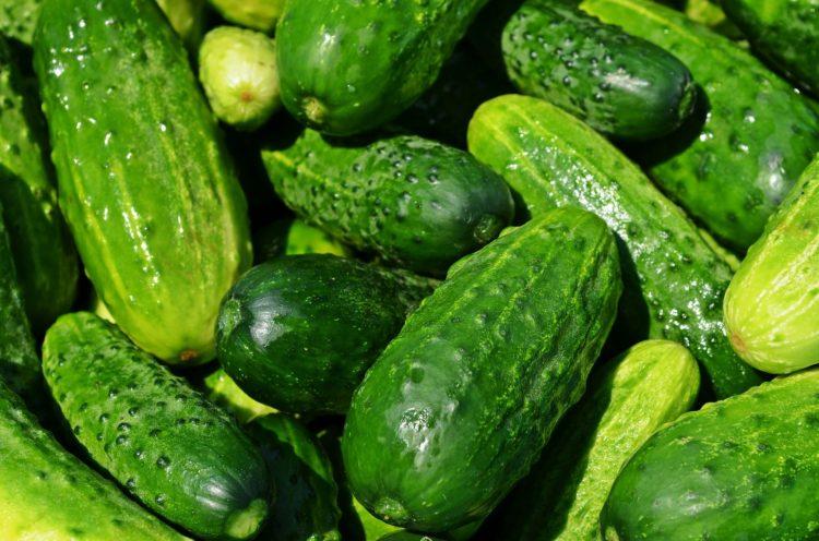 washing cucumber